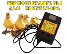 Терморегуляторы для инкубаторов