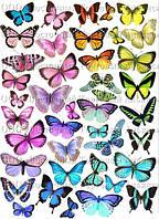 Печать съедобного фото - Формат А4 - Сахарная бумага - Бабочки №3