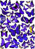 Печать съедобного фото - Формат А4 - Вафельная бумага - Бабочки №5