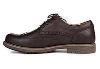 Туфли мужские Caterpillar Oxford Borg  коричневые