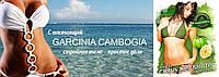 Эффективное похудение с гарцинией камбоджийской