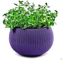 Кашпо Cozies 9,4 л фиолетовое, Keter (ЕС)