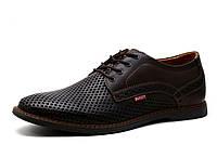Туфли спортивные мужские Bumer, кожа,перфорированные, коричневые, р. 41 42 43
