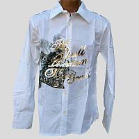 Рубашка мужская D&A