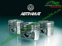 Поршня ГАЗ 405дв 95.5 Автрамат гр.В