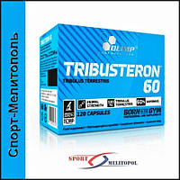Olimp Tribusteron-60 120 капс. - Стандартизированы под 60% сапонинов !!