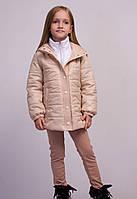 Куртка   В2015062