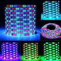 Светодиодная лента RGB 3528(2835) ip65 60д/метр. Многоцветная. ВЛАГОЗАЩИТА