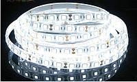 Светодиодная лента smd 5050 ip65 60д/метр влагозащита нейтральный белый