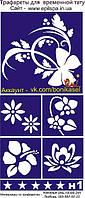 Трафарет для Біо-Тату 20*9н н1