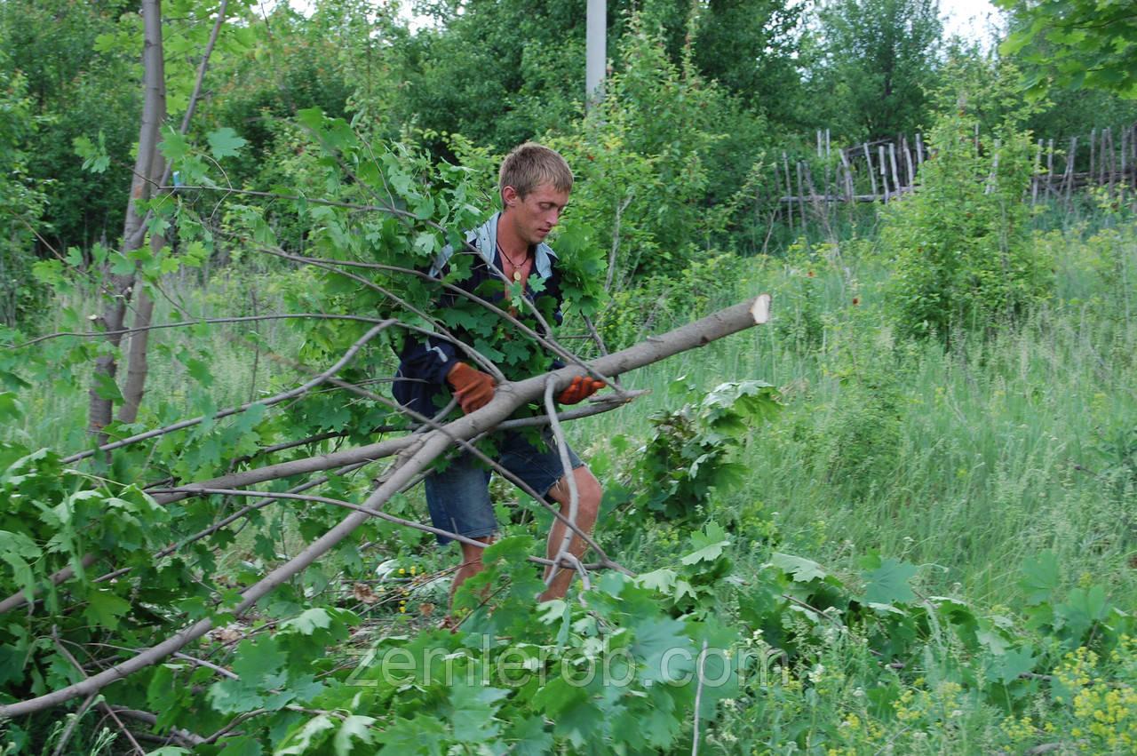 Благоустройство территории - Харьков-землероб в Харькове