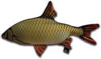 Игрушка антистрессовая 3K Fish Краснопёрка малая 48х28см
