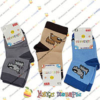Детские носки Турция (Размер: 25- 28) 6- 8 лет (4215-2)
