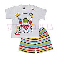 Комплект 2-ка футболка и шорты Babexi
