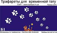 Трафарет для Био Тату 20*9 Б1 (одноразовый)