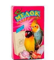 Мелок с морскими ракушками для средних попугаев природа
