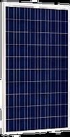 Солнечная батарея JASolar JAP6 60-260/3BB 260 Вт 24В