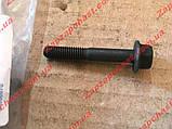 Болт крепления крышки распредвала Ланос Lanos Авео Aveo Лачетти Lacetti 1.6 GM 94500901 (GM, фото 5