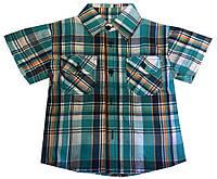 Детская рубашка на мальчика. 92-116 р.р. Бирюзовая. Оптом., фото 1