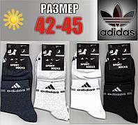 Мужские спортивные носки с сеткой ADIDAS 42-45р. НМЛ-123