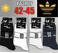 Мужские спортивные носки с сеткой ADIDAS 42-45р. НМЛ-124