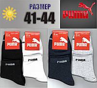 Мужские спортивные носки с сеткой PUMA 41-44р. НМЛ-125