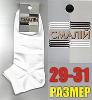"""Мужские носки демисезонные белые короткие  """"Смалий"""" 29-31р. НМД-351"""