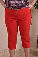 Летние капри больших размеров 012 красные 48-74