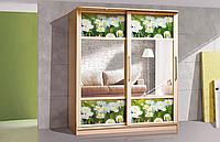 Шкаф купе с рисунком Монтре 2Д (цветное стекло)  /  Шафа купе з малюнком Монтре 2Д (кольорове скло)