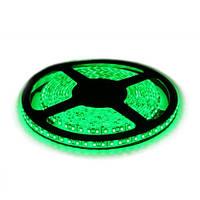 Светодиодная лента DX 3528-60 G IP65 зеленый, герметичная, 1м