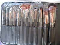 Профессиональный набор кистей для макияжа 12 кистей