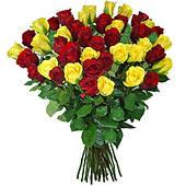 Букет из 39 красно-желтых роз