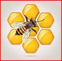 - Препараты для пчел