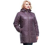 Куртка женская демисезонная стеганная большие размеры,М-315 виноград