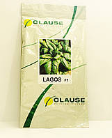 Семена шпината Лагос F1 250 гр