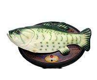 """Поющая рыба """"Веселый карп"""" на стену, декоративная рыба, говорящая рыба, необычный подарок для рыболовов"""