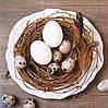 """Салфетка для декупажа """"Гнездо"""", размер 33*33 см, трехслойная"""