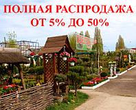 Озеленение. РАСПРОДАЖА ОТ 5% ДО 50%