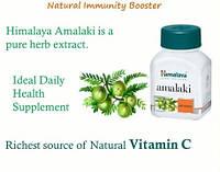 Амла Хималая, экстракт, Амалаки каплсулы, повышение иммунитета, Himalaya Amalaki, Аюрведа Здесь