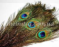 "Перо павлина, 25-30 см, размер ""глазка"" 5,5х4 см"