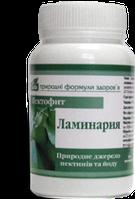 Пектофит - Ламинария