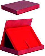 Красный кейс для диплома