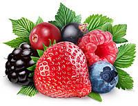 Ароматизатор Лесные фрукты (порошкообразный)