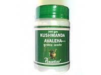 Кушманда лехья расаяна (джем), Kushmanda avaleha, пищеварительная, мочеполовая, респираторная системы, Аюрведа Здесь