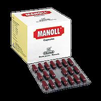 Манолл Чарак, Manoll Charak, мощный минерально-травяной антиоксидант, Аюрведа Здесь