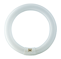 Лампа люминесцентная кольцо PHILIPS TL-E 32W/54 G10q