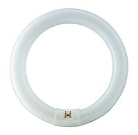 Лампа люминесцентная кольцо PHILIPS TL-E 22W/54 G10q
