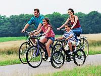 Виды прогулочных велосипедов для всей семьи