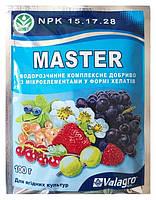 Удобрение Master  для ягодных культур 15.17.28, 100г.