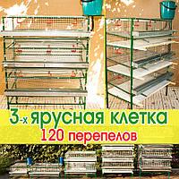 Клетка для перепелов 3-х ярусная, для содержания 115 до 150 взрослых перепелов